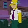 Homero argentino