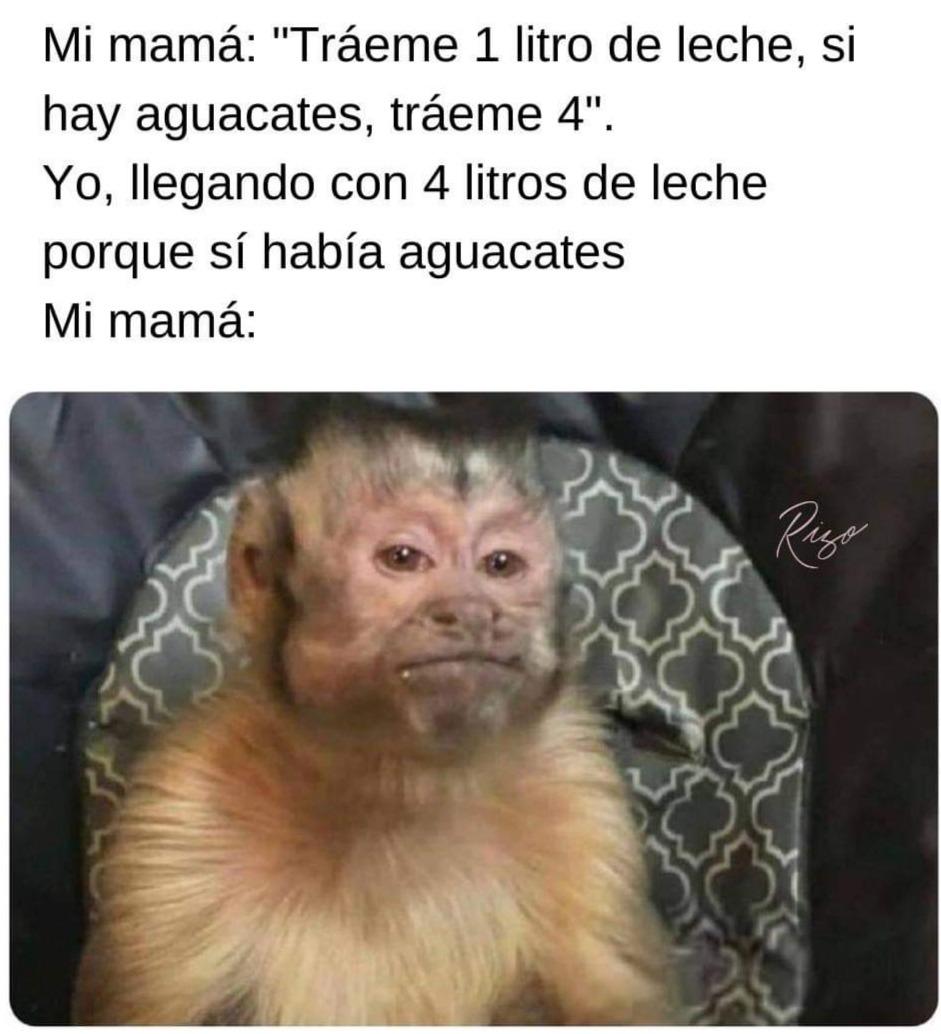 BPGG - meme