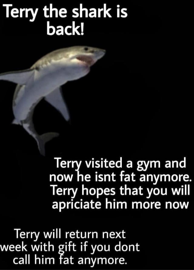 terry - meme