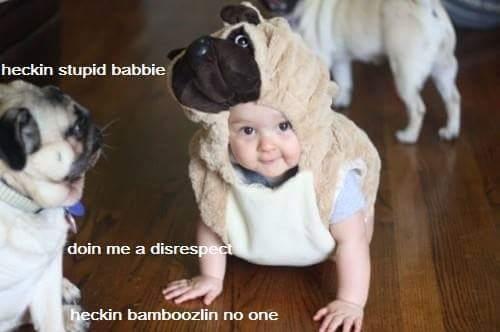 No bamboozlin - meme