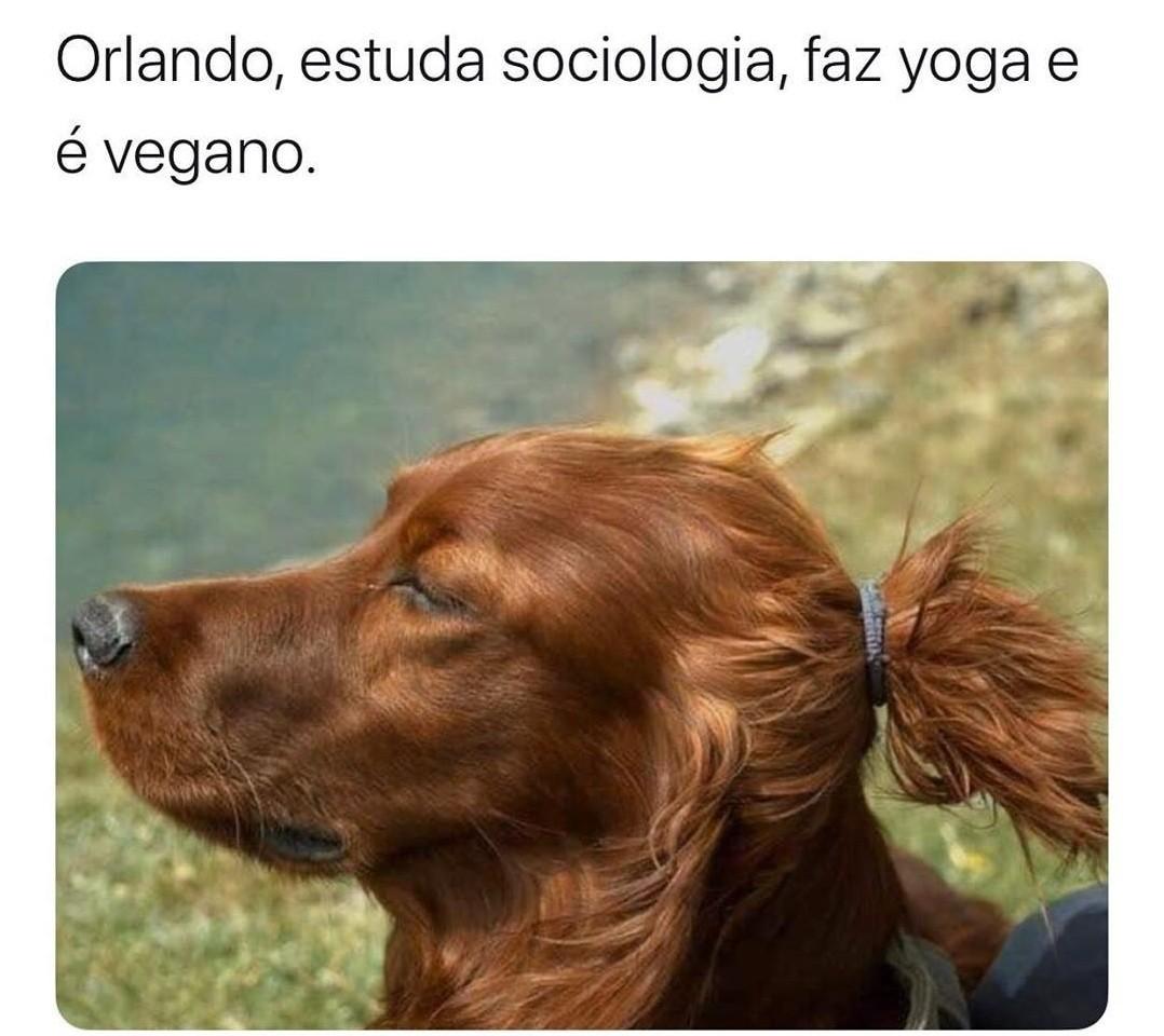 Vegetal nao é animal - meme