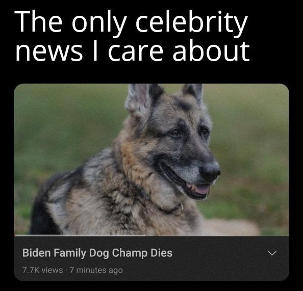 Rest in Peace, President Doggo. You would've been a better president than Biden himself. o7 - meme