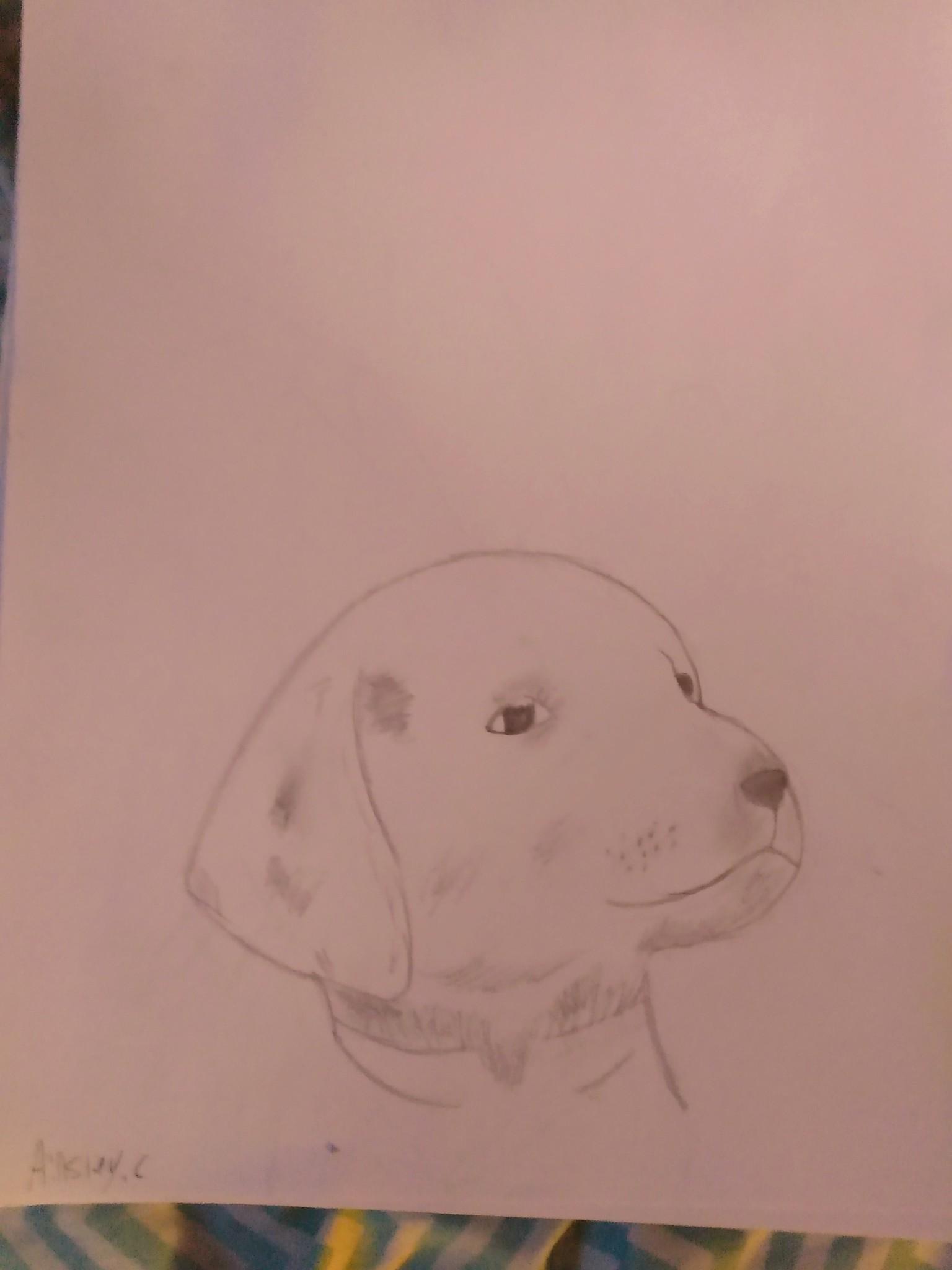 I know it's not a meme but it's cute I drew him myself his name is Chuck
