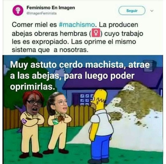 Muerte a las feminazis - meme