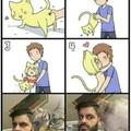 Ne faites pas ça à votre chat ça ne marche pas !!!