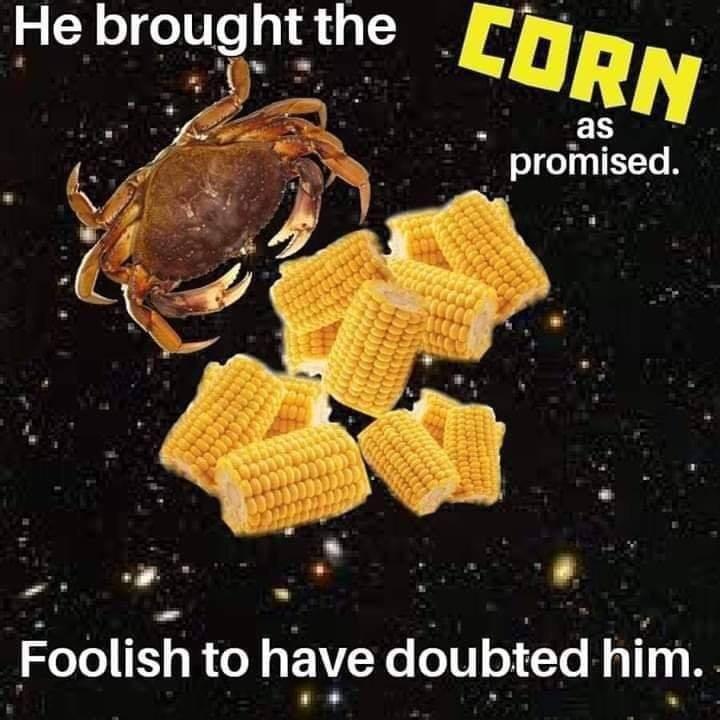 Never doubt again - meme