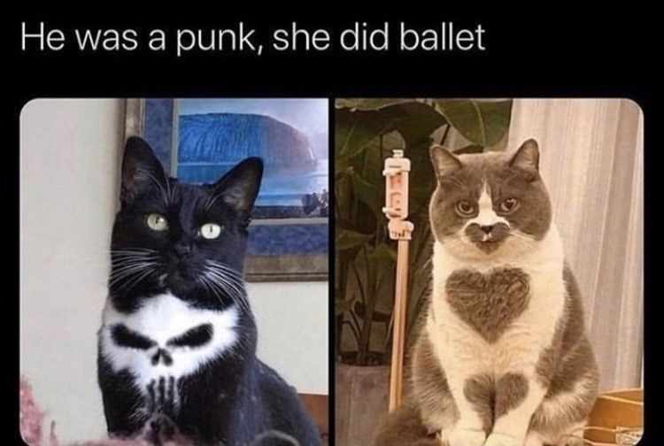 punisher and heart cat - meme