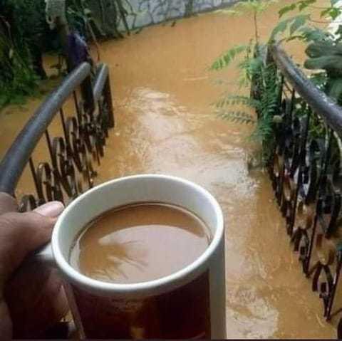 Café com leite derramado - meme