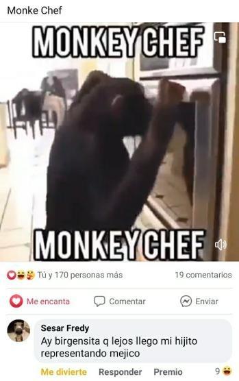 MONKEY CHEF - meme