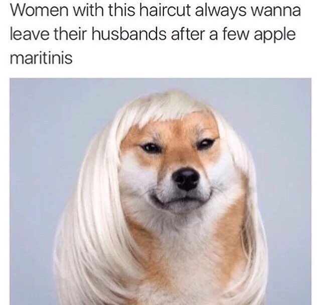 Important info - meme