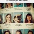 Dr. Pug