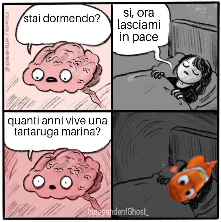 Spero piaccia :) - meme