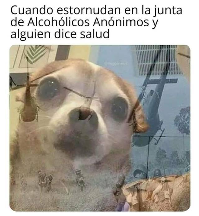 Humor x3 - meme