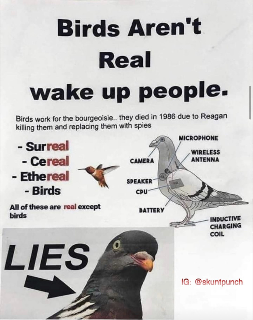 It's time you learned the truth - meme
