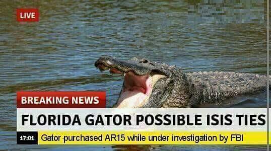 Gators lives matter - meme