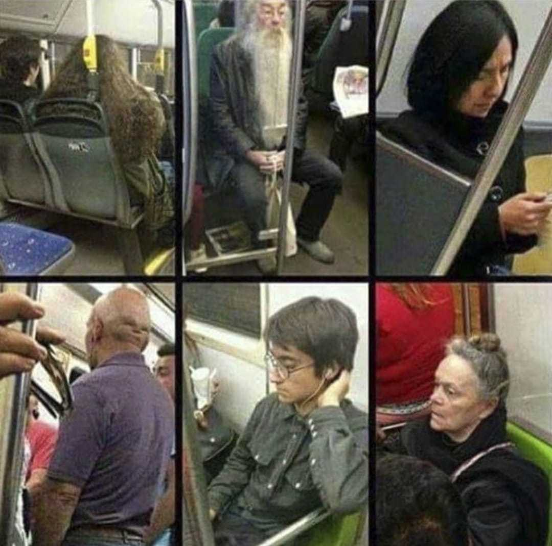 This morning my train transformed into the Hogwarts Express - meme