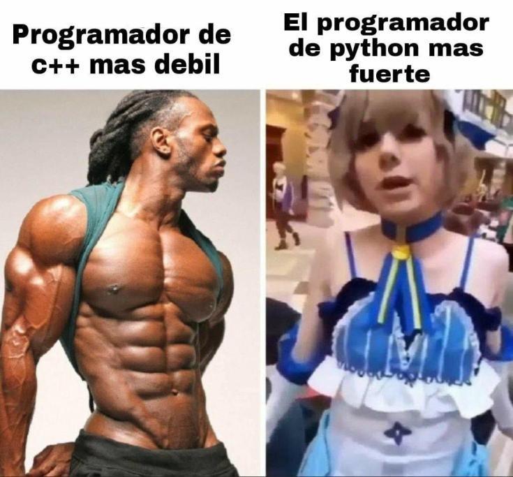 Programador - meme