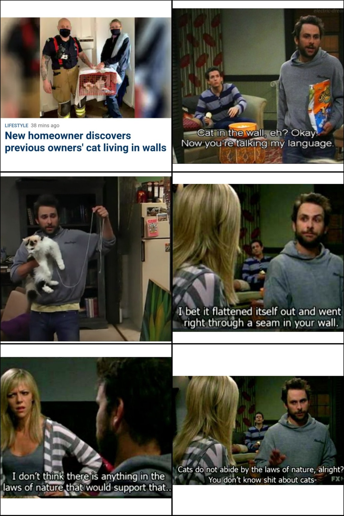Hello, Charlie Kelly here, local business owner and cat enthusiast... - meme
