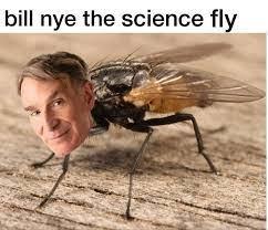 bill bill bill bill - meme