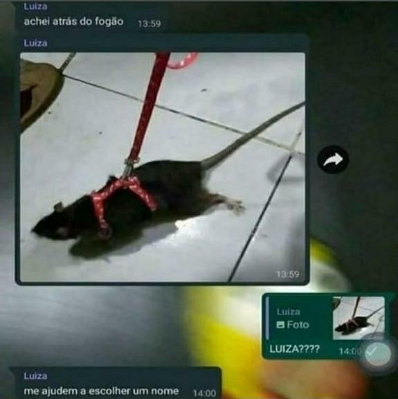 Luiza!!!! - meme