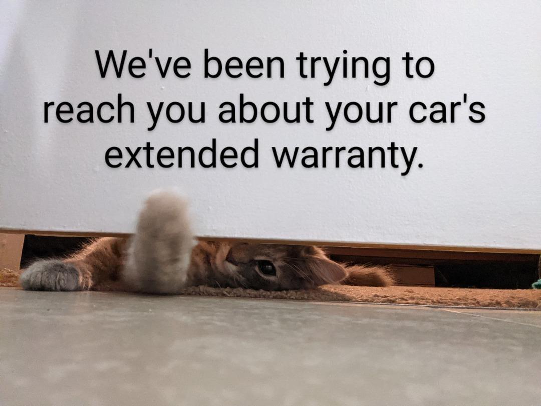 Warranty - meme
