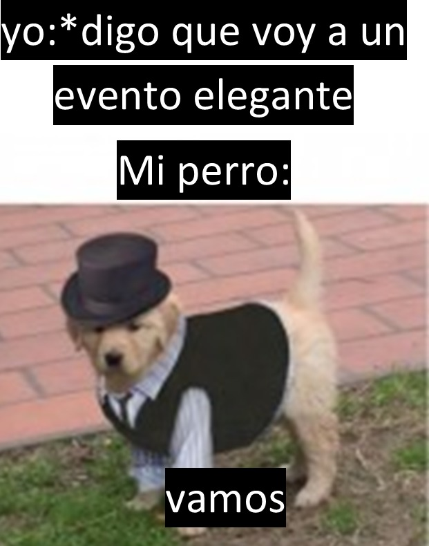 tarde - meme