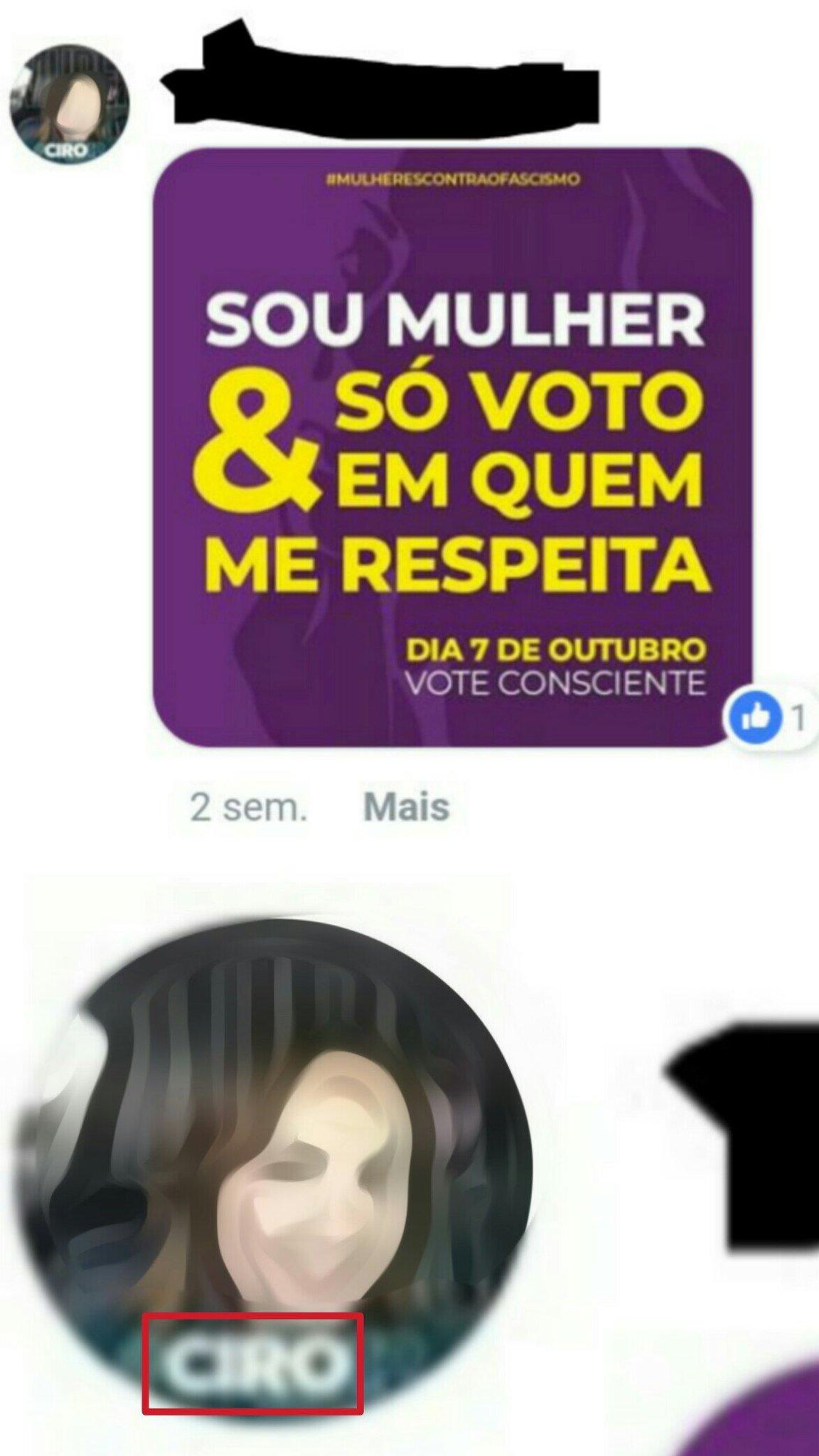Comentário em uma foto de #EleNão - meme