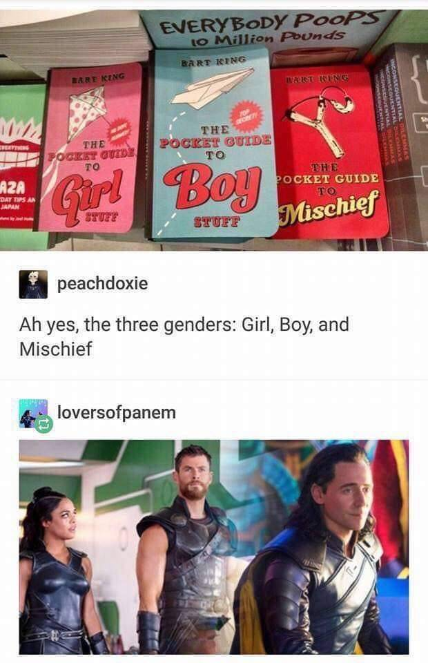 I mean given what Loki does in north mythology it's not that far off. Honestly child me would want to buy all three or at least the mischief one. - meme