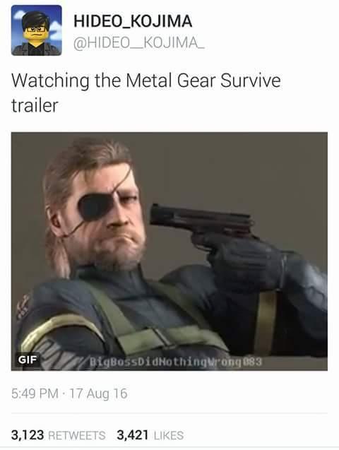 Mgs - meme