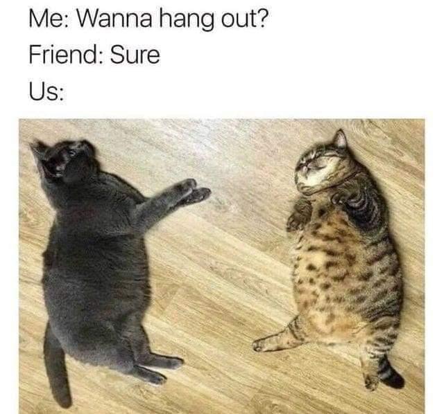 Hangout - meme