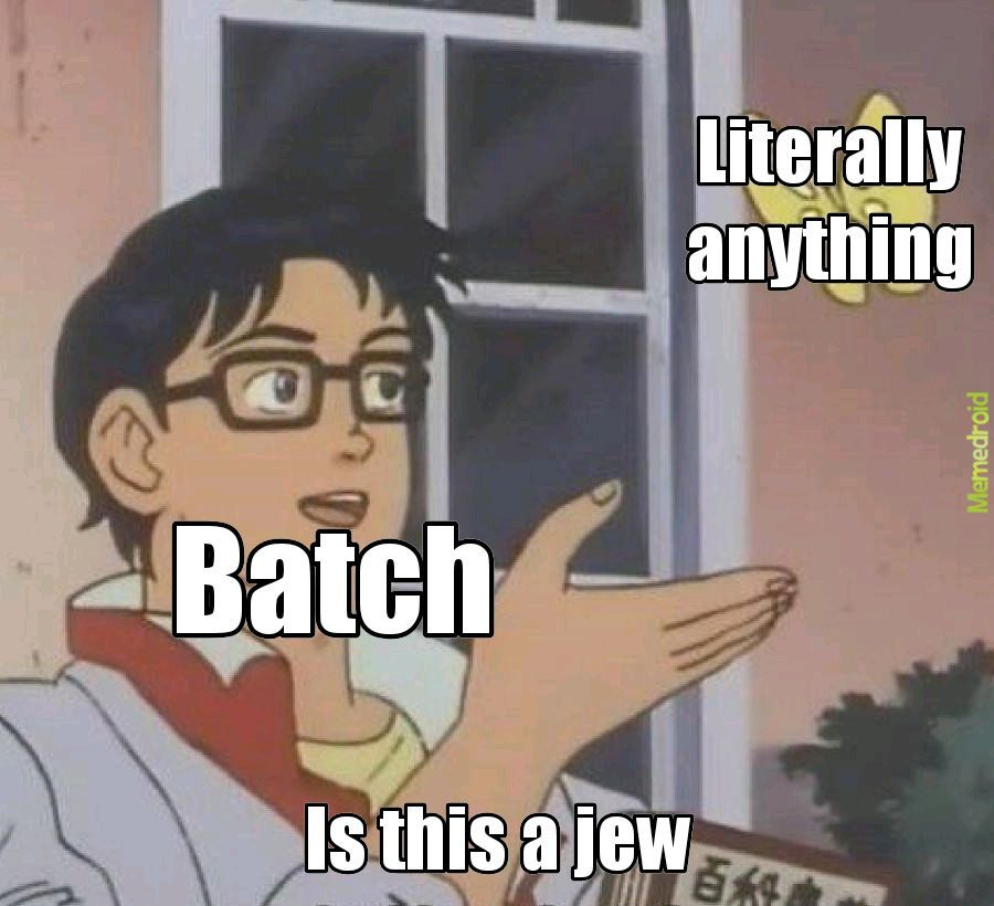 Batch is a moron - meme