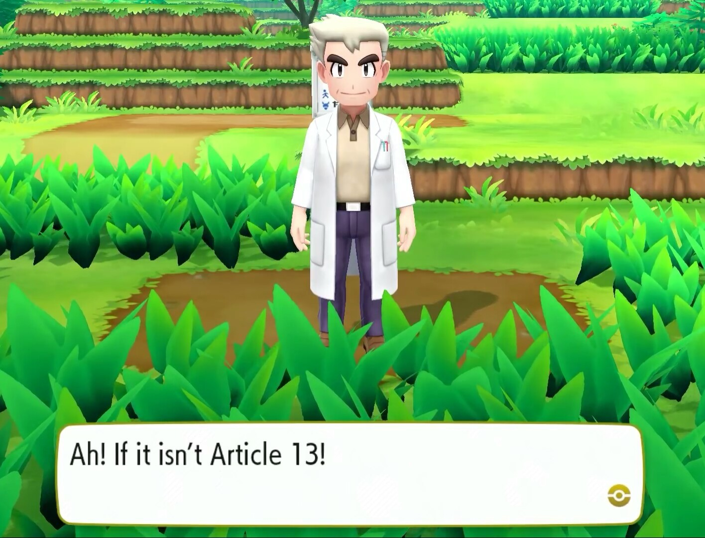 Article 13 - meme