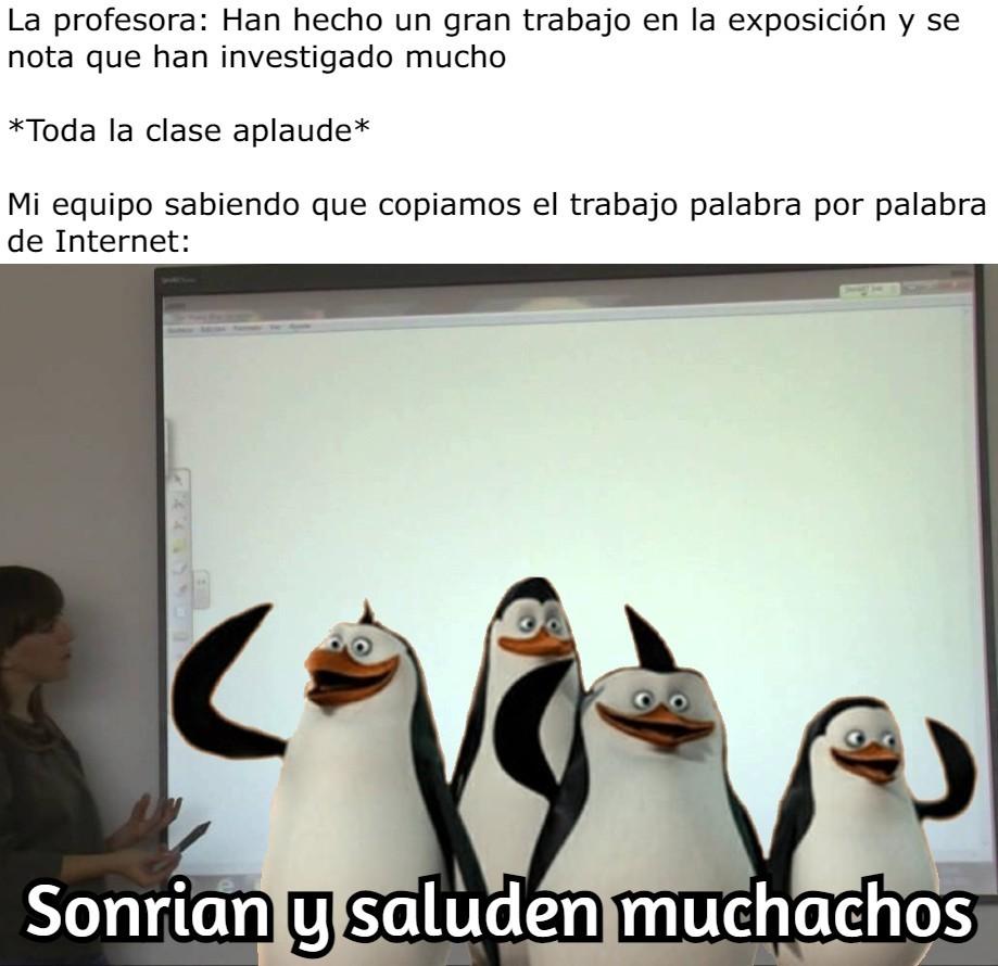 Si, somos pingüinos - meme