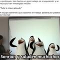 Si, somos pingüinos
