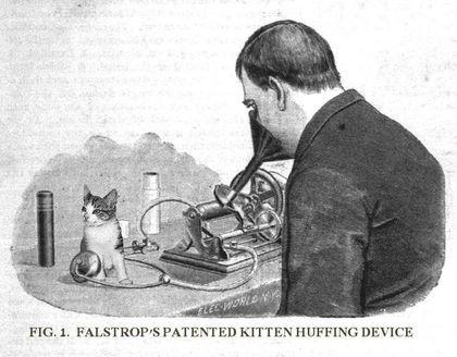 Aparelho desenvolvido para cheiramento de gatinhos. - meme