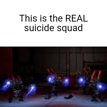 If you don't think so go suicide with those other wanna bees - meme