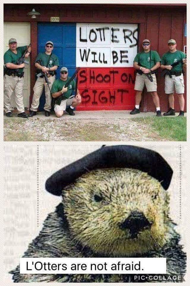 Viva L'Otters - meme