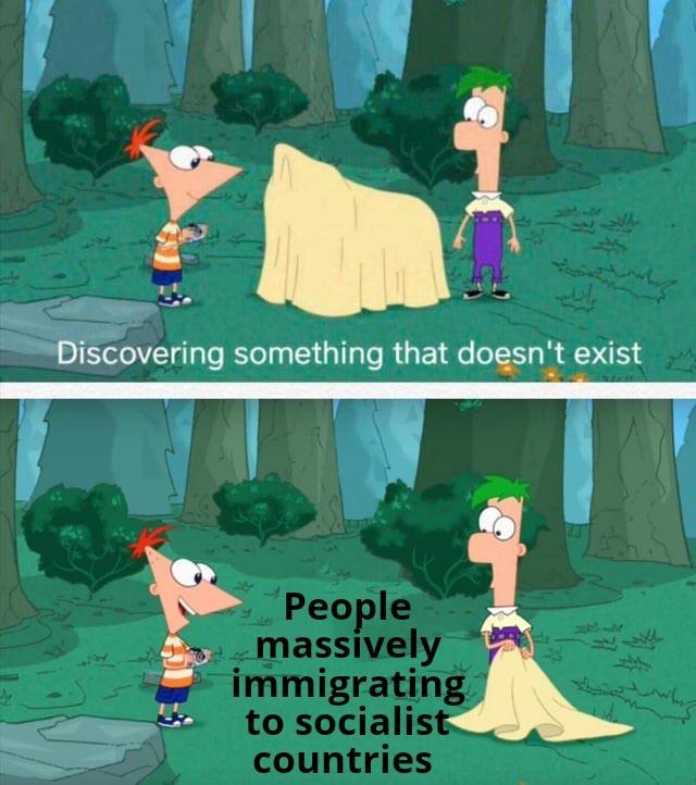 Massive immigration - meme