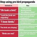 this is propaganda shhhhhh