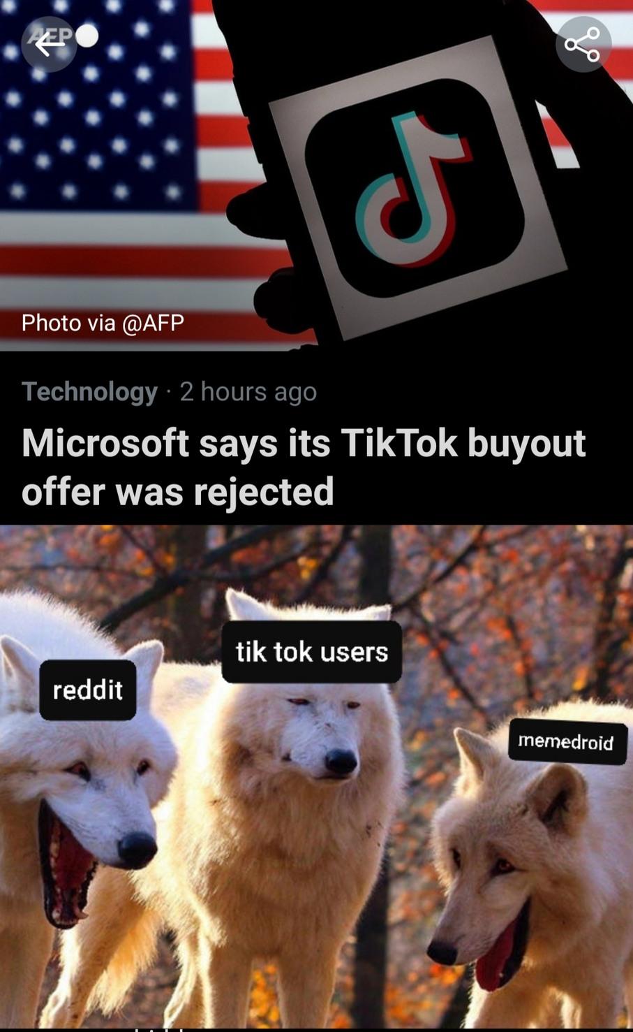TIK TOK WILL BE GONE - meme