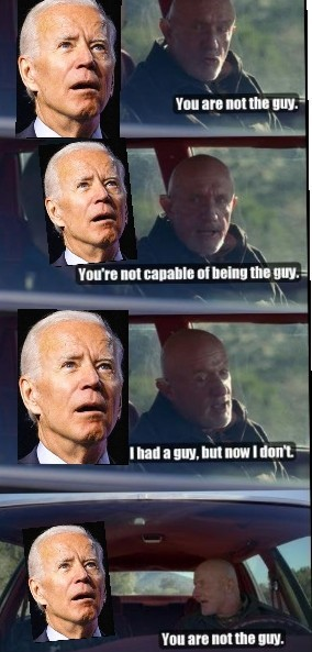 Breaking Biden - meme