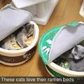 eat the pussy ramen