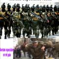 Las fuerzas armadas