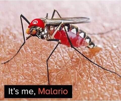 Malario sunshine - meme