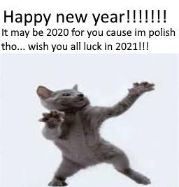 HAPPY NEW YEAR EVERYONE! - meme