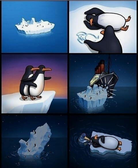 Titanic version pingouin - meme