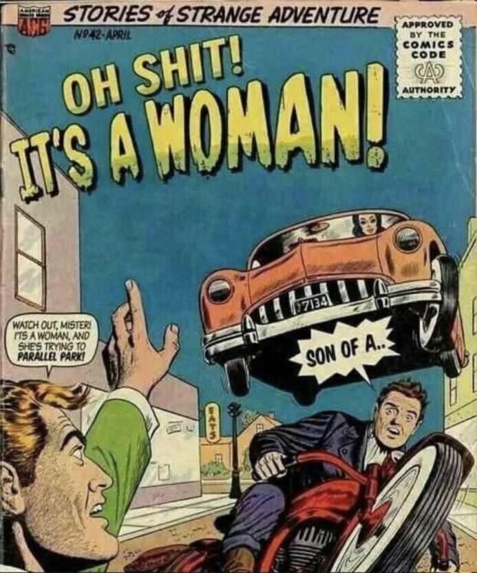 Se não gosta de como as mulheres dirigem, saia da calçada - meme
