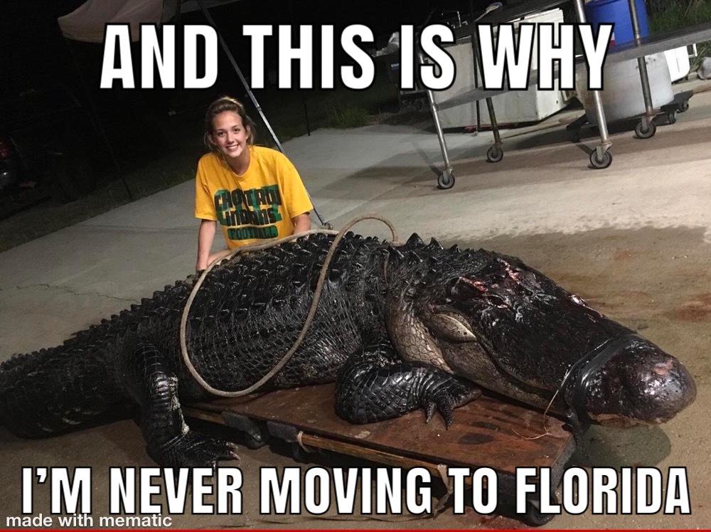 Florida Gators - meme