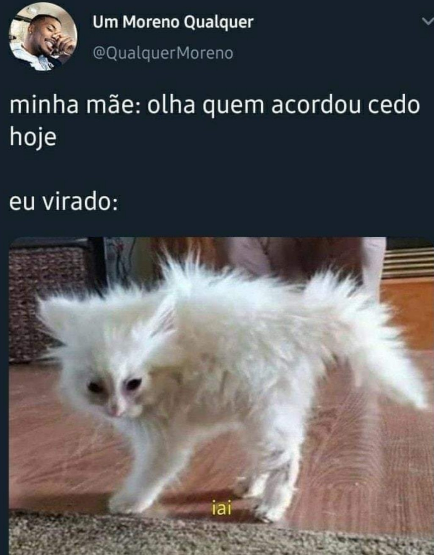 IAI - meme