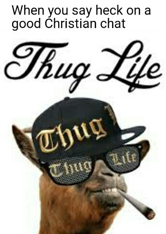 I didn't choose the thug life - meme